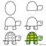 imp-tartaruga2