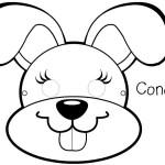 Careta Conejo (4)