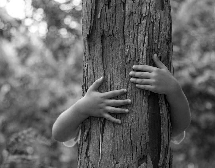 amico-albero